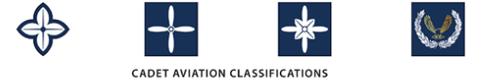 classification badges